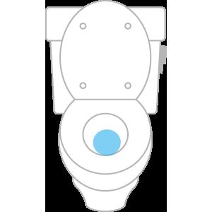 トイレの便器周辺
